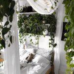 piante-in-camera-da-letto-copertina2