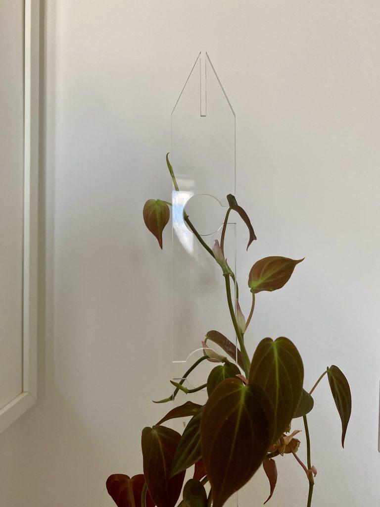 tutori per piante invisibili 2