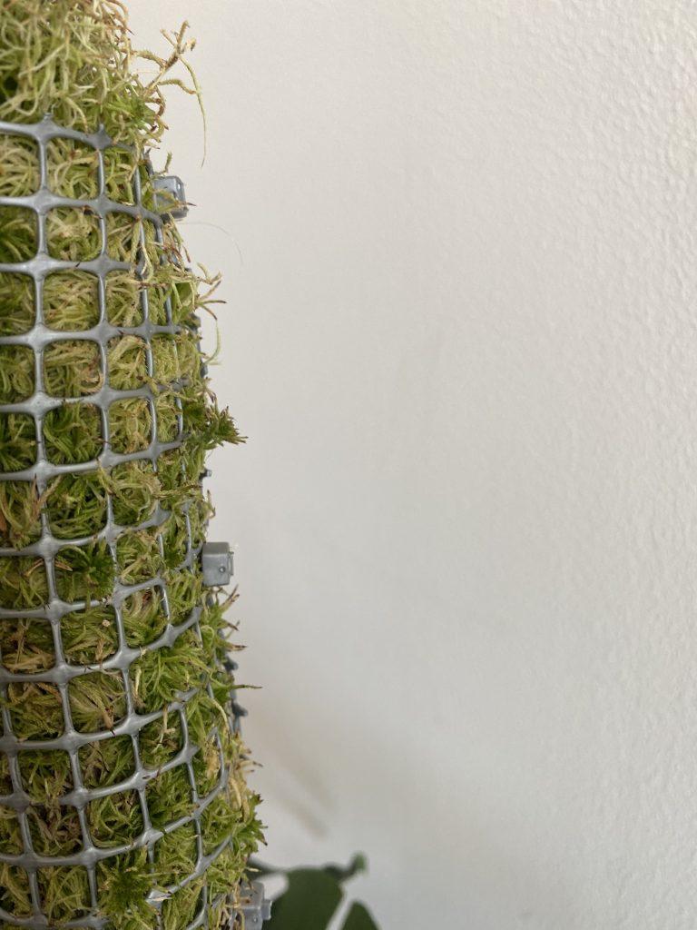 tutore per piante metallico