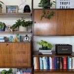 piante da libreria 2