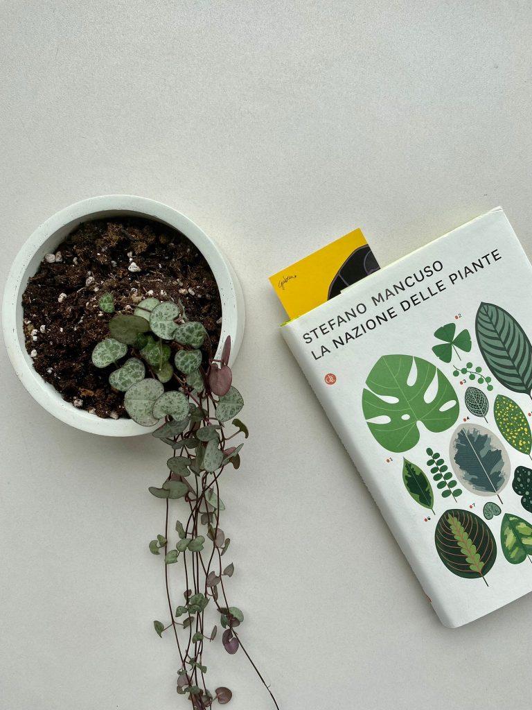 libri sulle piante 2